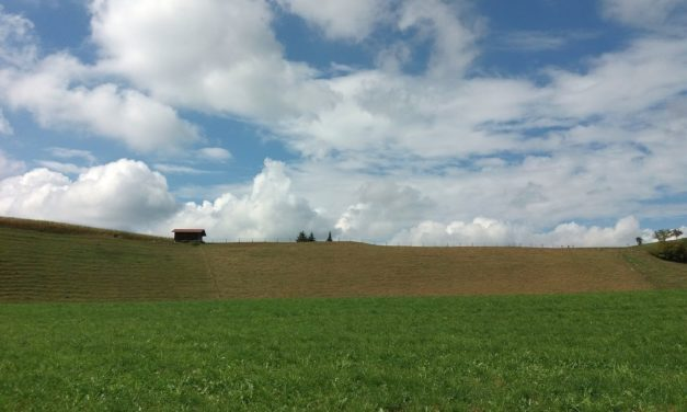 Neues «Forum Landschaft, Alpen, Pärke»