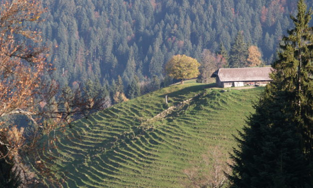 BLN-Gebiet Napfbergland: Was heisst das eigentlich?