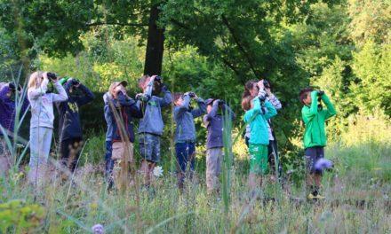 Naturlehrgebiet Buchwald Ettiswil feiert Jubiläum