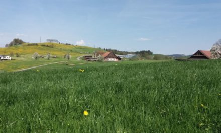 Förderung innovative Projekte – Neue Regionalpolitik NRP 2020-2023 im Kanton Luzern