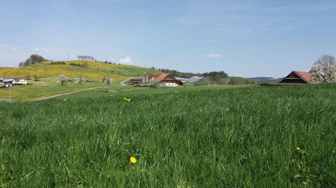 Förderung innovative Projekte – Neue Regionalpolitik NRP 2020-2013 im Kanton Luzern