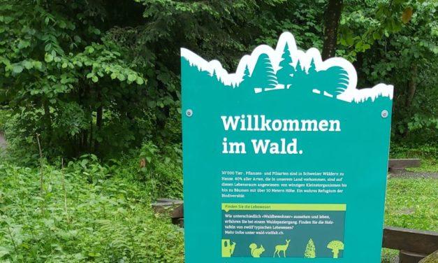 Waldbewohner stellen sich vor – Parcours mit Wettbewerb
