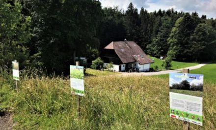 Aktion «Erlebnis Bauernhof 2020» ist gestartet