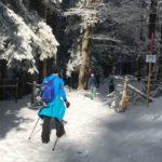 Ausserordentlich harter Winter für die Wildtiere: Bitte um Rücksichtnahme
