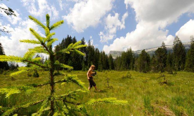 Swisstainable – Vorschau Kampagne von Schweiz Tourismus